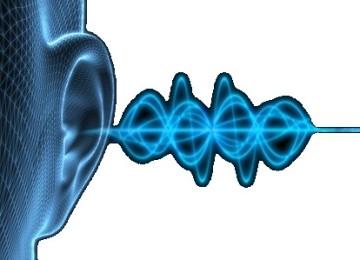 Применение адаптогенов при лечении нейросенсорной тугоухости